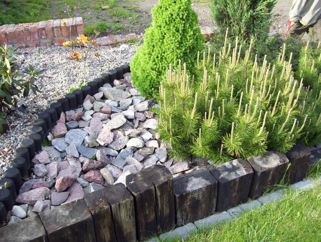 ogrody przydomowe skalniaki pictures - photo #35